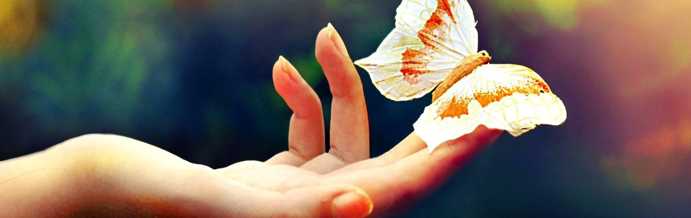 Hand holding a butterly