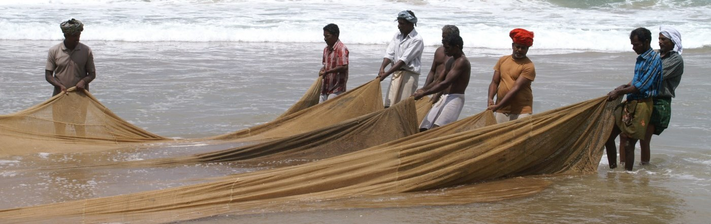 Fishermen bringing in their nets